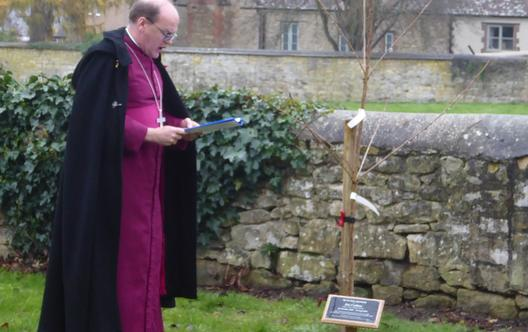 Principal blessing tree in honour of Jon Carbery